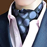 MENDENG Mens Polka Dot Jacquard Woven 100% Silk Cravat Necktie Formal Ascot