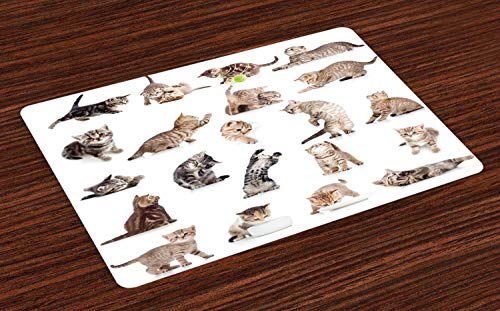 Ambesonne Cat Place Mats Set of 4, Illustration of Funny Playful Cats on White Background Animals Kitten Pattern, Washable Fabric Placemats for Dining Table, Standard Size, Beige White