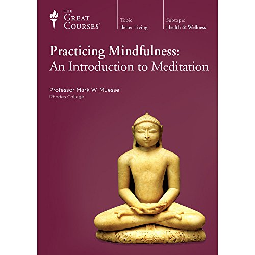 Practicing Mindfulness: An Introduction to Meditation by The Teaching Company