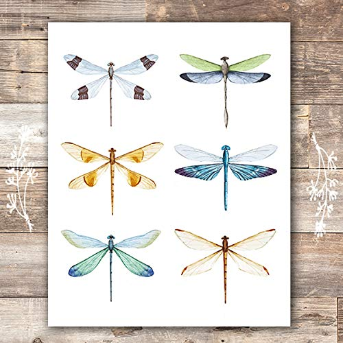 Dragonfly Wall Art Print - Unframed - 8x10 | Dragonfly Wall Decor (Dragon Prints Fly)