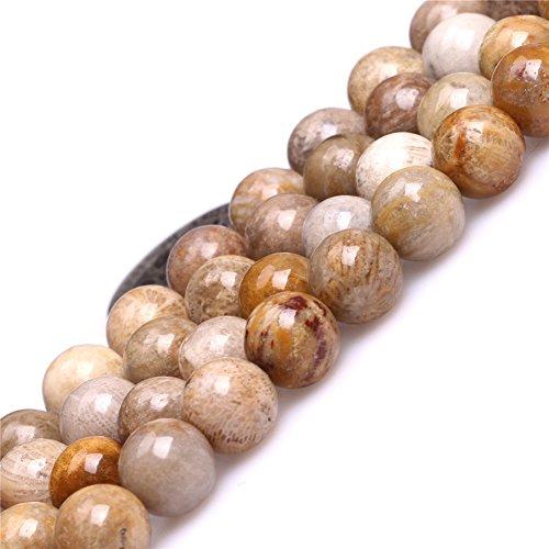 Indonesia Fossil Jasper Beads for Jewelry Making Natural Gemstone Semi Precious 8mm Round Yellow 15