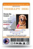 XpressID Holographic Therapy Dog ID Card ( Custom ) | Includes Registration to National Dog Registry
