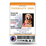 Holographic Therapy Dog ID Card Vertical