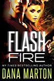 Flash Fire: (A Navy SEAL Romance)