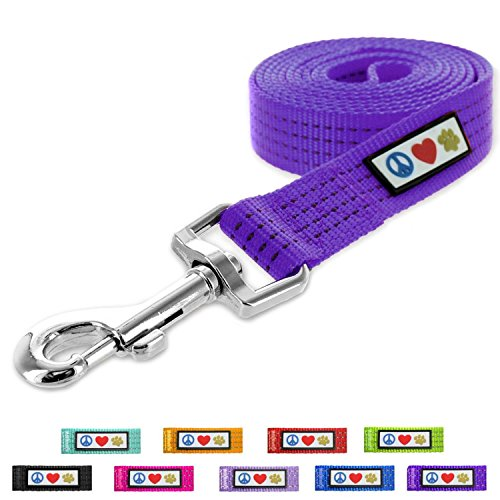 Pawtitas Reflective Leash Puppy Leash Reflective Dog Leash Reflective Dog Training Leash 6 ft Dog Leash Extra Small Dog Leash/Small Dog Leash Purple Dog Leash