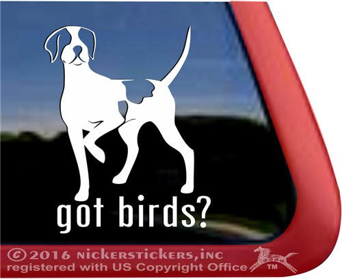 Got Birds? ~ English Pointer Vinyl Window Auto Decal Sticker