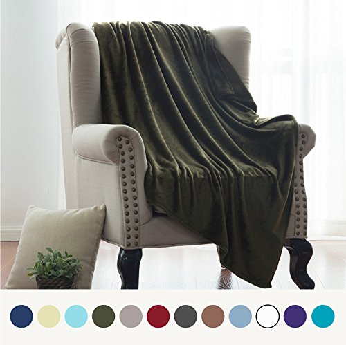 Flannel Fleece Luxury Blanket Olive Green Throw Lightweight Cozy Plush Microfiber Solid Blanket by Bedsure (Olive Green Sofa)