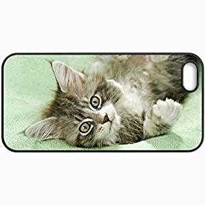 Fashion Unique Design Protective Cellphone Back Cover Case For iPhone 5 5S Case Cat Cat Kitten Gray Fluffy Black