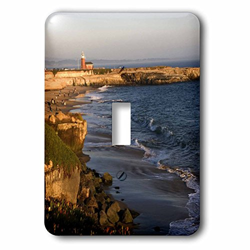 Toggle Light Switch Cover - 3dRose lsp_88343_1 Red Brick Lighthouse at Santa Cruz, California Us05 Dfr0295 David R Frazier Single Toggle Switch