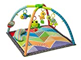 : Infantino Pond Pals Twist and Fold Activity Gym and Play Mat