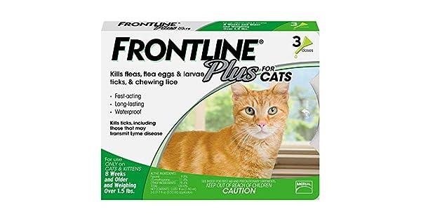 Amazon.com: FrontIine Plus Flea Medicina para gatos y ...