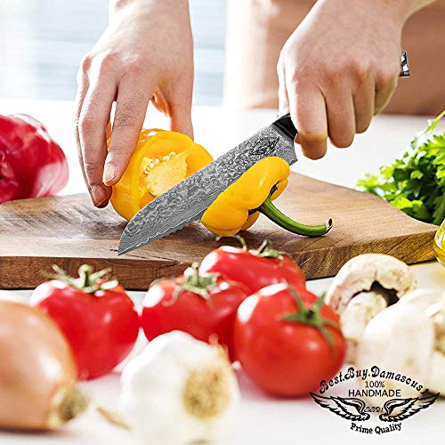 Santoku Chef knife 8 inch Best Quality Japanese VG -10 Super Steel 67 Layer High Carbon Stainless Steel, Incredible G10 Handle, Full-tang, Razor Sharp Chef Blade Kitchen Carving fillet chefs knives by Best.Buy.Damascus1 (Image #9)