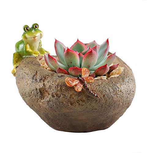 Anpatio Adorable Carton Plant Pot Mini Resin Frog Shaped Suncculent Planter Desktop Flowerpot Fairy Home Garden Window Box Decoration