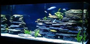 Amazon Com 12 Pc Cave Rock Wall Decoration Aquascape Kit Aquarium