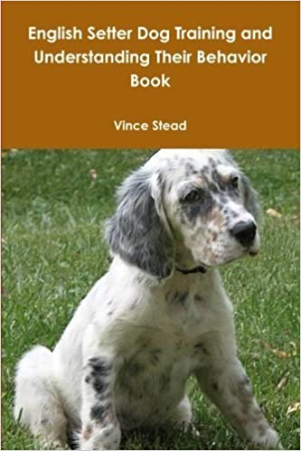 Book English Setter Dog Training and Understanding Their Behavior Book by Vince Stead (2013-03-05)
