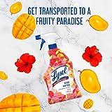 Lysol Bathroom Cleaner Spray, Mango & Hibiscus, 28