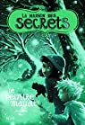 La maison des secrets, Tome 5 : Le peintre maudit par West