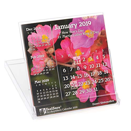 (2019 Mini Desk Calendar - Flower and Plant Photography with Holidays - in Compact, Stand-Up Floppy-Disk 4x4 Jewel Case)