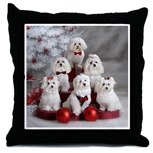 CafePress - Maltese Group Holiday Item - Throw Pillow, Decorative Accent Pillow