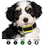Our K9 Training Made Easy Pain Free Bark Collars and Shock Collars for Extra Small - Small Dogs