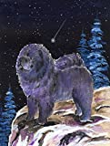 Caroline's Treasures SS8456CHF Starry Night Chow Chow Flag Canvas, Large, Multicolor Review