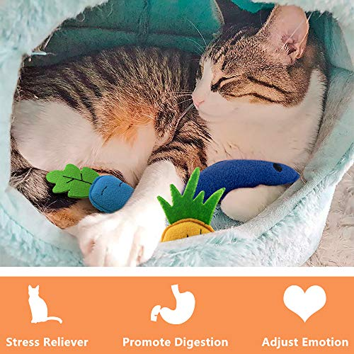 AWOOF Catnip Toys for Cats, Natural Catnip Kitten Toys Cat Toys Set 5