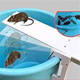 Pushhr Auto Reset Rat Mice Seesaw Traps Mousetrap Bait Catcher Walk Plank