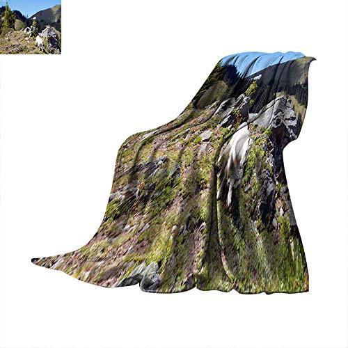 Angoueleven Warm Blanket Baby Kid Mountain Goat Descending Hurricane Hill Throw Blanket 62