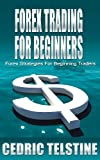 Forex Trading For Beginners: Forex Strategies For Beginning Traders (Forex Trading Success Book 2)