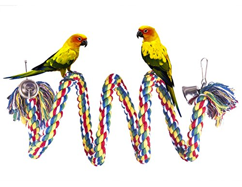 OnePlus Colorful Bird Perch Natural Dye Rope Parrot Chewing Toy Sturdy Bird Swing for Bungees, Parakeets, Cockatiels and Macaws (59 - Glasses For Are Which Right Me