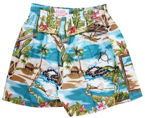 "Bamboo Boxer Kailua Unisex Underwear Boxer Shorts in Teal - 3X / 46""-48"" Waist"