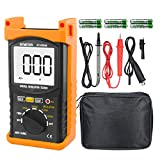 Digital Insulation Resistance Tester, BTMETER