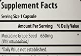 Muscadine Grape Seed 90 Count Bottle