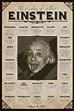 Albert Einstein Quotes Poster Art Print