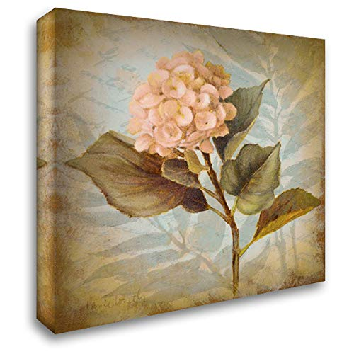 (Pink Hydrangea Portrait 28x28 Gallery Wrapped Stretched Canvas Art by Loreth, Lanie)