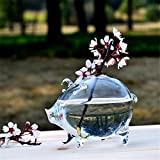 SHINA Creative Clear Glass Small Pig Type Table Vase Decoration Crafts for Home Decoration or Office or Wedding or Creative Shop Decoration