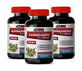 Anti-inflammatory Supplement - ASHWAGANDHA Root Extract - Premium Dietary Supplements - ashwagandha Capsules for Skin - 3 Bottles 360 Capsules
