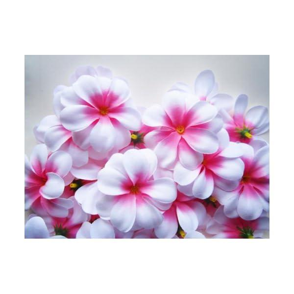 (100) White Hawaiian Plumeria Frangipani Silk Flower Heads – 3″ – Artificial Flowers Head Fabric Floral Supplies Wholesale Lot for Wedding Flowers Accessories Make Bridal Hair Clips Headbands Dress