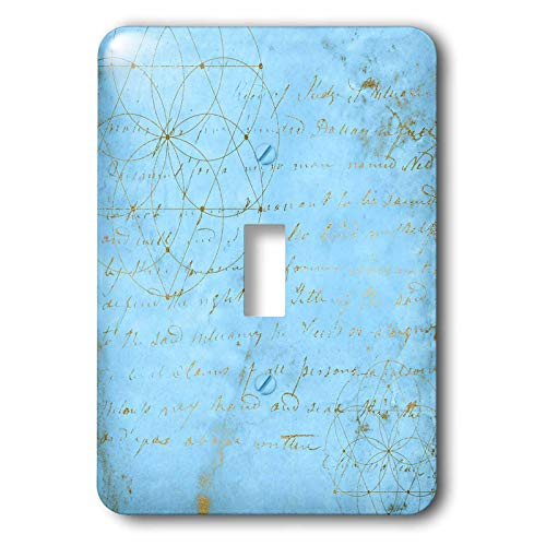 3dRose Uta Naumann Faux Glitter Pattern - Image of Sky Blue and Gold Metal Foil Vintage Luxury Text Pattern - Light Switch Covers - single toggle switch (lsp_290168_1) by 3dRose