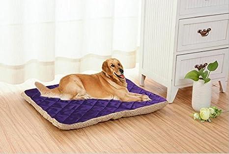 Tappeto Morbido Per Cani : Whyyudan cuscino per cani e gatti cuscino per animali domestici