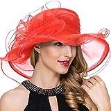 Womens Wide Brim Kentucky Derby Church Dress Fascinator Tea Party Organza Hat (S019-Red)