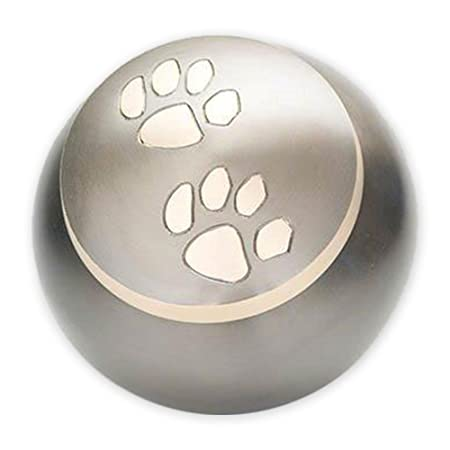 Beautiful Life Urns Pawsitively Cherished Pet Urn – Unique Cremation Urns for Pets, Large, Slate Gold