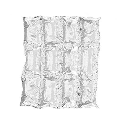 Reusable Ice Pack Sheets by Insta Freeze | For Coolers and Shipping – Stays Cold For 48 Hours (10 Pack 4×3 Sheets)