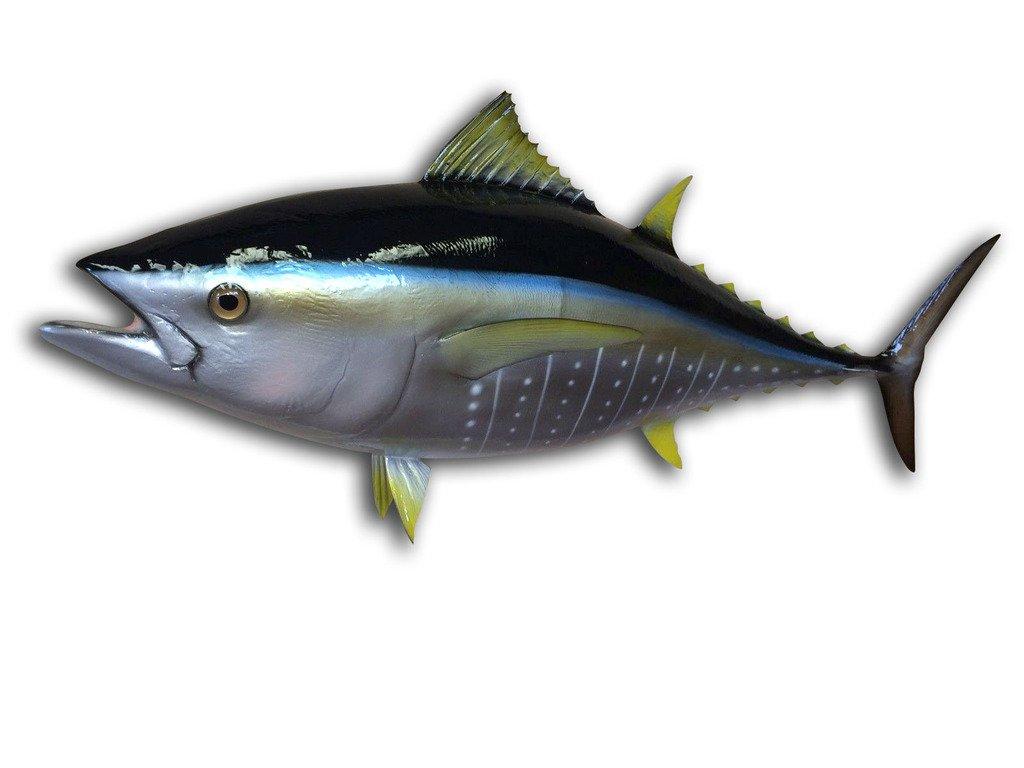 38'' Yellowfin Tuna Half Mount Fish Replica , Fishing Wall & Coastal Decor