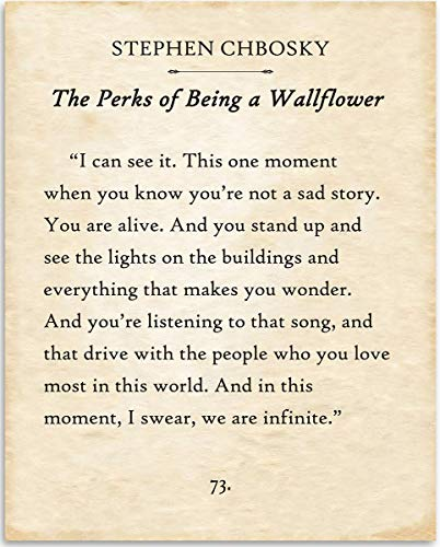Stephen Chbosky - I Can See It - Perks of Being A Wallflower - 11x14 Unframed Typography Book Page Print - Great Gift for Book Lovers, Also Makes a Great Gift Under $15