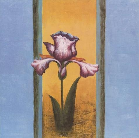 [High Quality Polyster Canvas ,the High Resolution Art Decorative Canvas Prints Of Oil Painting 'Purple Iris In Full Bloom', 18x18 Inch / 46x46 Cm Is Best For Nursery Artwork And Home Decoration And] (White Trash Lady Costume)