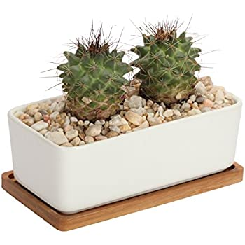 Amazon Com Ceramic Succulent Planter Pot 6 5 Inch With