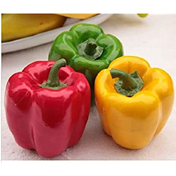 3x Artificial Chili Fake Fruit Faux Vegetables Decor Children Teaching  Props By E CRAT