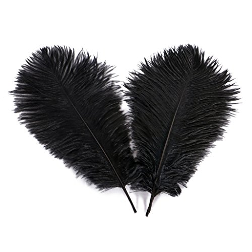 Wionya 20pcs Ostrich Feather Craft 10-12inch(25-30) Plume for