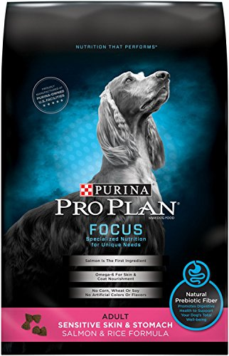 Purina Pro Plan Focus Sensitive Skin & Stomach Salmon & Rice Formula Dry Dog Food 51UPNdGdB3L the pet shop nearby me The pet shop nearby me 51UPNdGdB3L